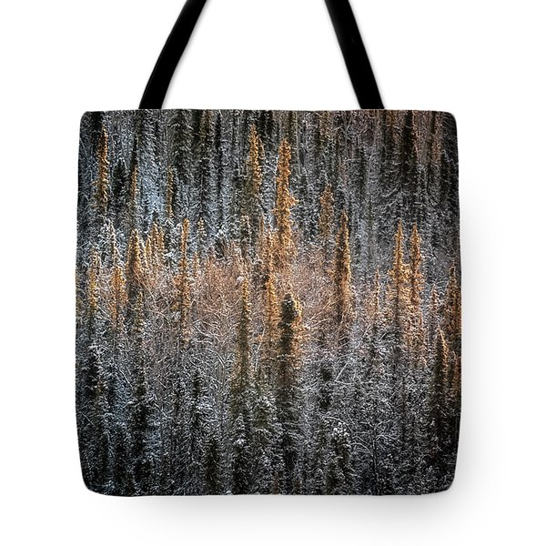 Touch Of Winter Tote Bag