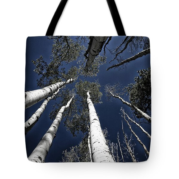 Towering Aspens Tote Bag