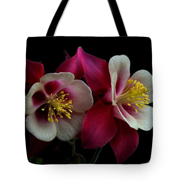 Twins Tote Bag by Doug Norkum