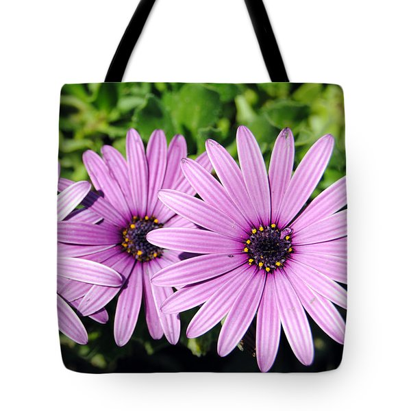 The African Daisy 2 Tote Bag