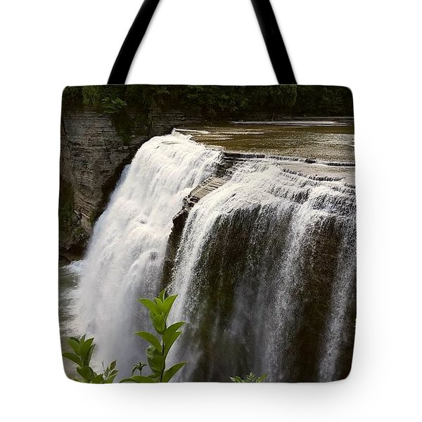 Tote Bag featuring the photograph Waterfall by Raymond Earley