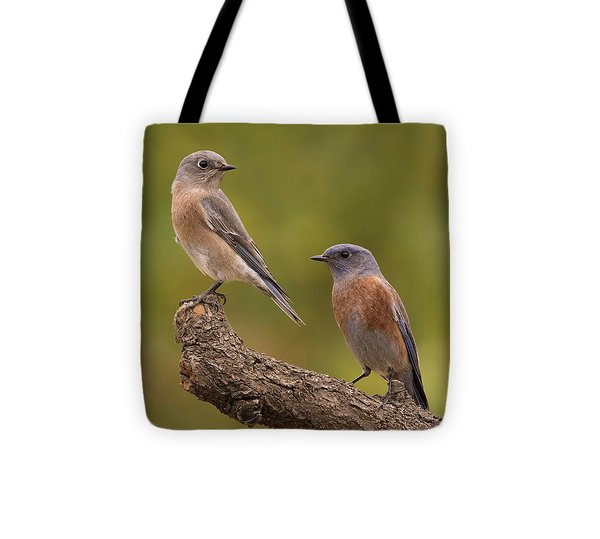 Western Bluebird Tote Bag by Doug Herr