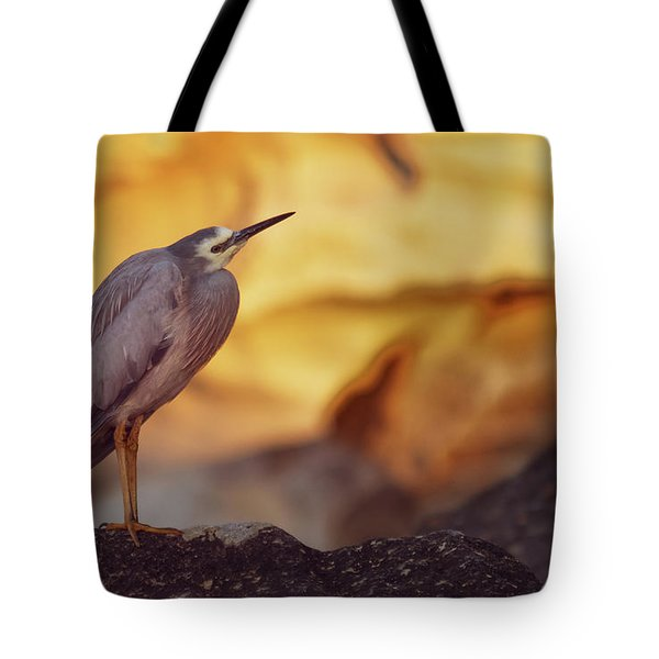 White-faced Heron At The Beach Tote Bag