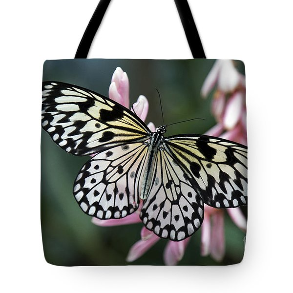 White Tree Nymph Butterfly Tote Bag