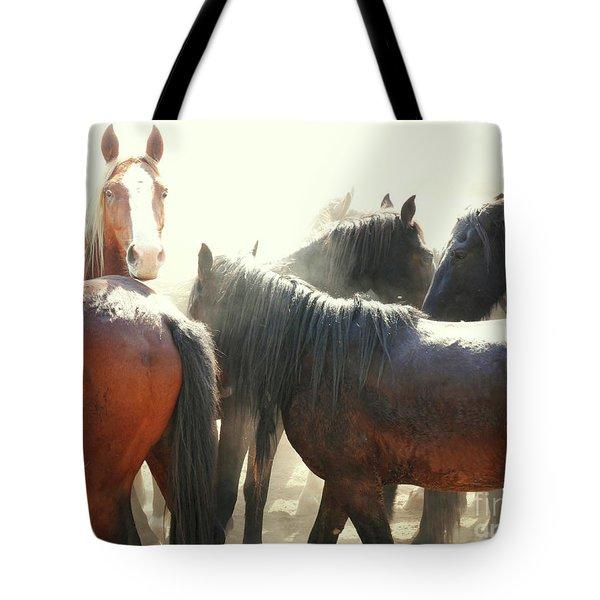 Wild Horses - Australian Brumbies 3 Tote Bag