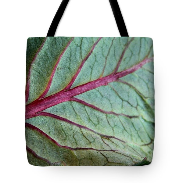 2010 Hydrangea Leaf Close Up 5 Tote Bag by Robert Morin