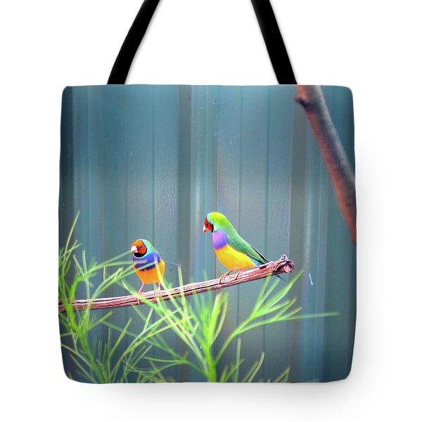 Aussie Rainbow Lovebirds Tote Bag