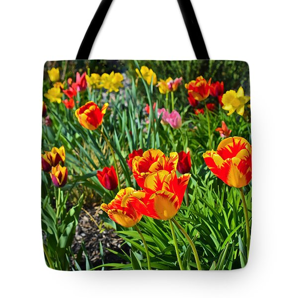 2015 Acewood Tulips 1 Tote Bag
