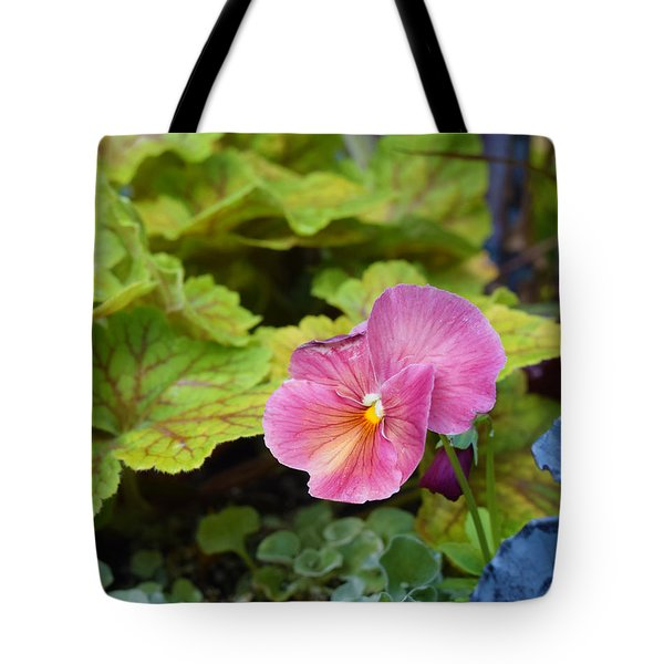 2015 After The Frost At The Garden Pansies 3 Tote Bag