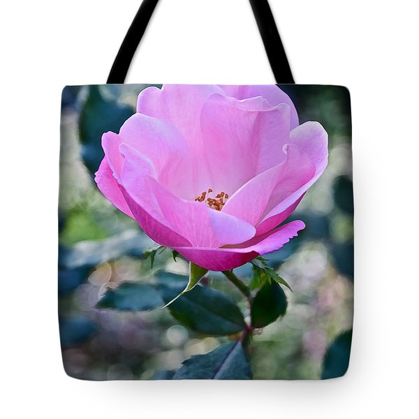 2015 After The Frost At The Garden Pink  Rose Tote Bag