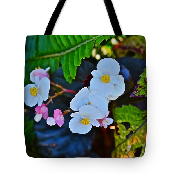 2015 Early September At The Garden Begonias Tote Bag