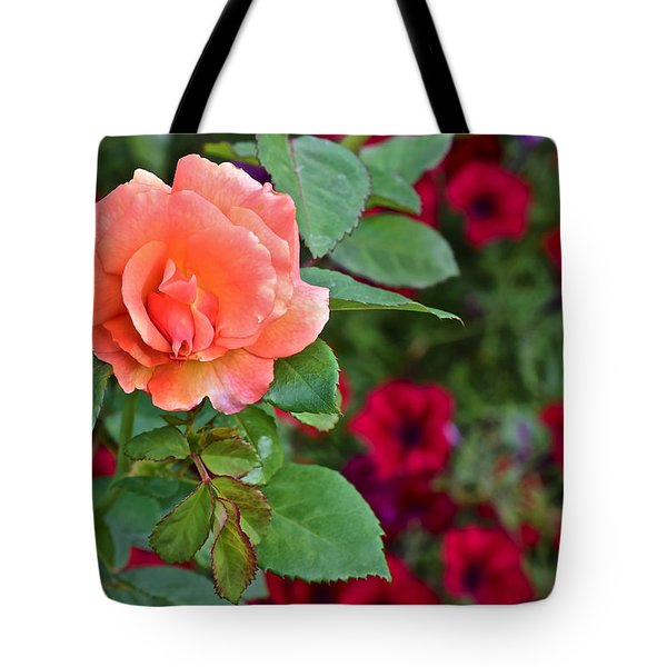 2015 Fall Equinox At The Garden Sunset Rose And Petunias Tote Bag