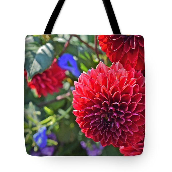 2015 Mid September At The Garden Dahlias 2 Tote Bag