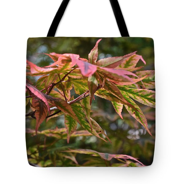 2015 Mid-september At The Garden Japanese Maple 1 Tote Bag