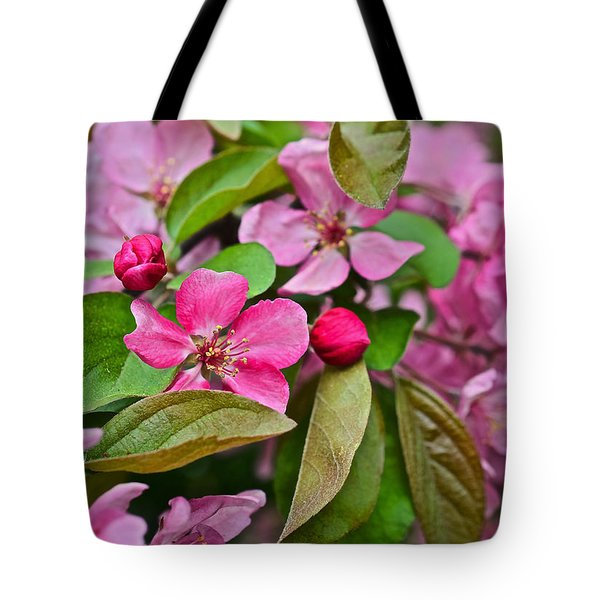 2015 Spring At The Gardens Pink Crabapple Blossoms 2 Tote Bag