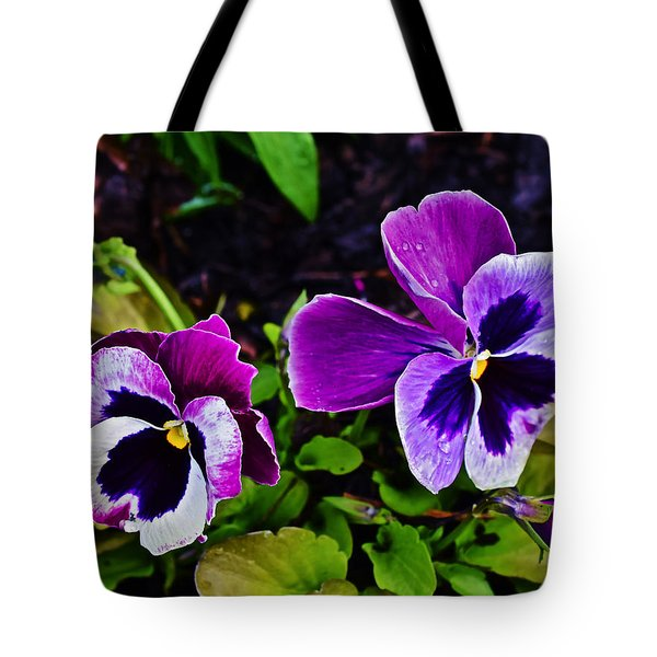 2015 Spring At Olbrich Gardens Violet Pansies Tote Bag