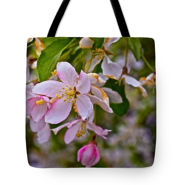2015 Spring At The Gardens White Crabapple Blossoms 1 Tote Bag