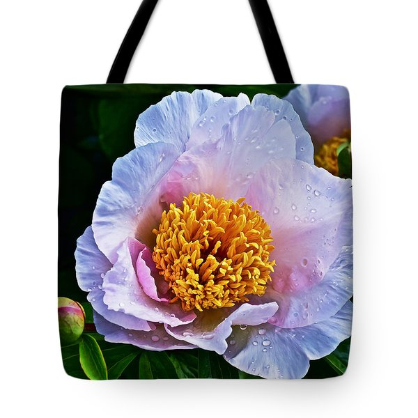 2015 Spring At The Garden White Peony  Tote Bag