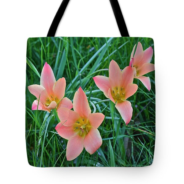 2015 Spring At The Gardens Meadow Garden Tulips 3 Tote Bag