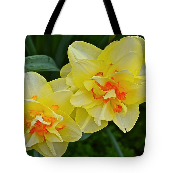 2015 Spring At The Gardens Tango Daffodil Tote Bag