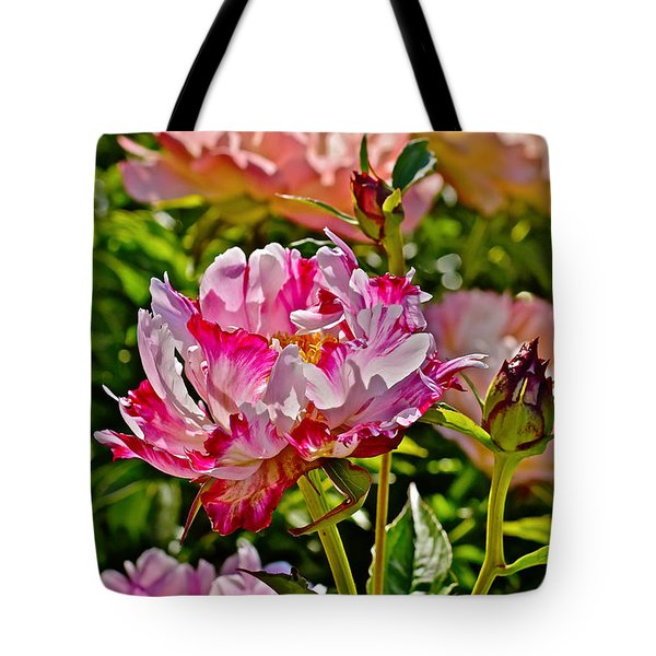 2015 Summer's Eve At The Garden Candy Stripe Peony Tote Bag