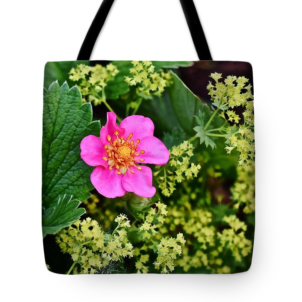 2015 Summer's Eve At The Garden Lipstick Strawberry Tote Bag