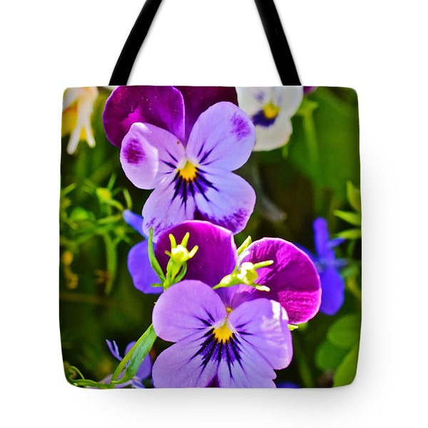 2015 Summer's Eve At The Garden Pansy Totem Tote Bag