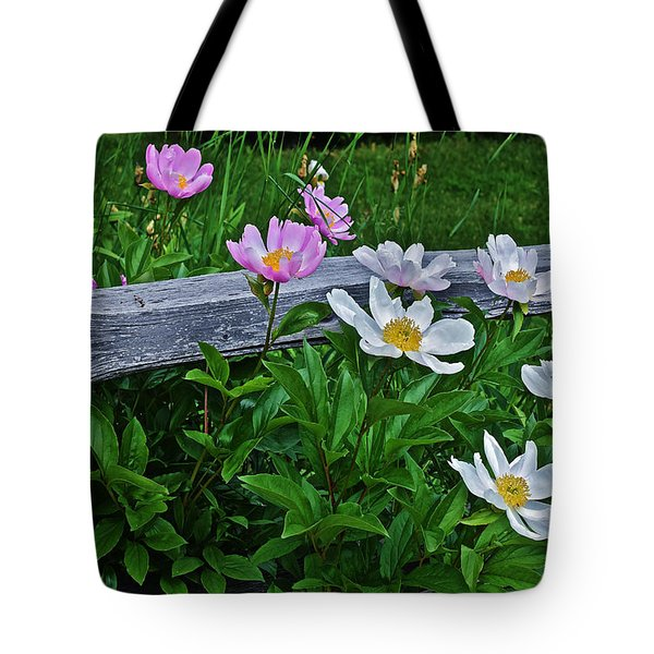2015 Summer's Eve Neighborhood Garden Front Yard Peonies 2 Tote Bag