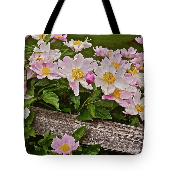 2015 Summer's Eve Neighborhood Garden Front Yard Peonies 3 Tote Bag