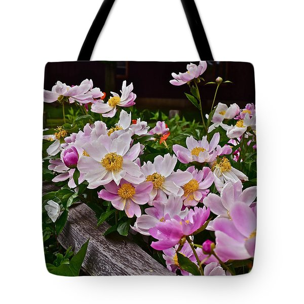 2015 Summer's Eve Neighborhood Garden Front Yard Peonies 4 Tote Bag