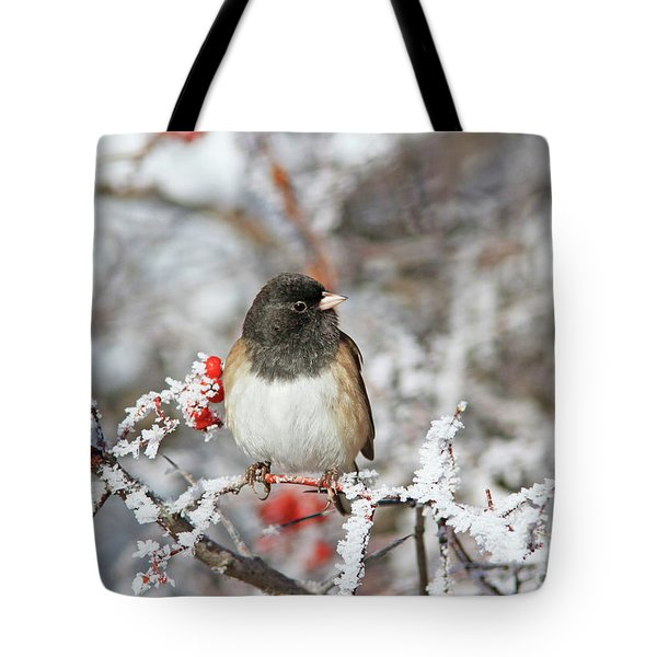 Dark-eyed Junco Tote Bag
