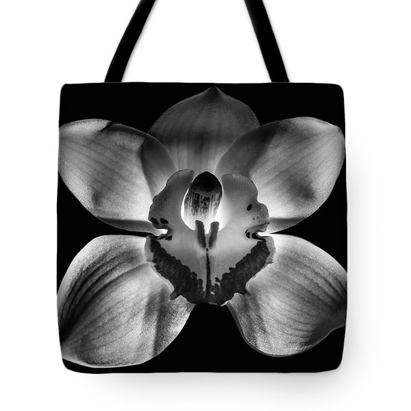 218 Fixed Background Tote Bag by Matti Ollikainen