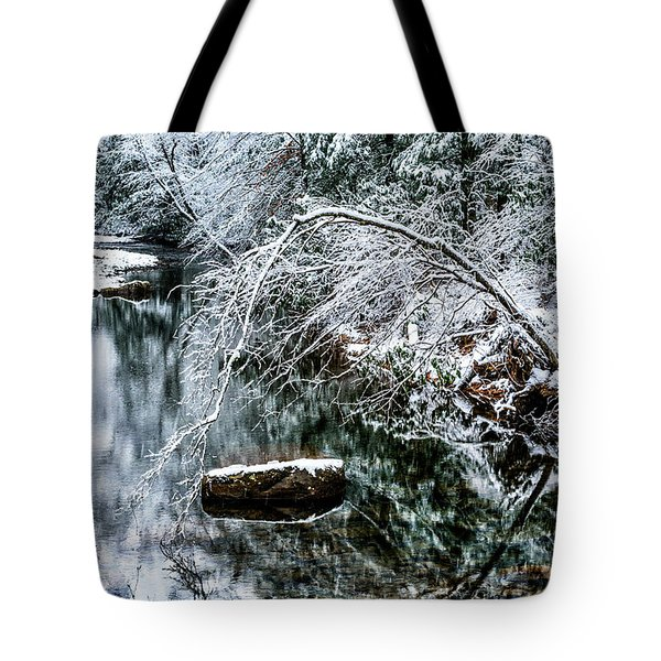 Tote Bag featuring the photograph Winter Along Cranberry River by Thomas R Fletcher