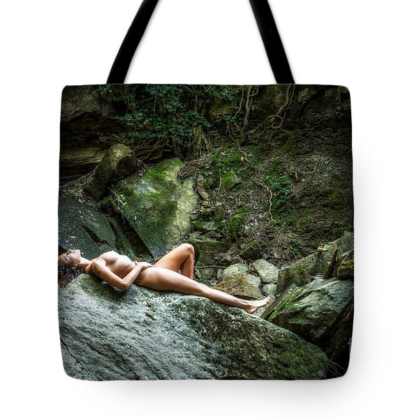 Intimations Of Immortality Tote Bag by Traven Milovich
