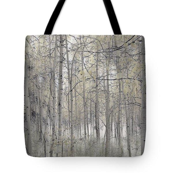238 Tote Bag by Peter Holme III