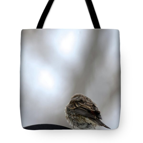 25 Degrees Tote Bag