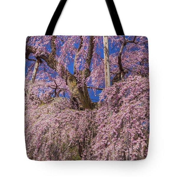 Tote Bag featuring the photograph Miharu Takizakura Weeping Cherry25 by Tatsuya Atarashi