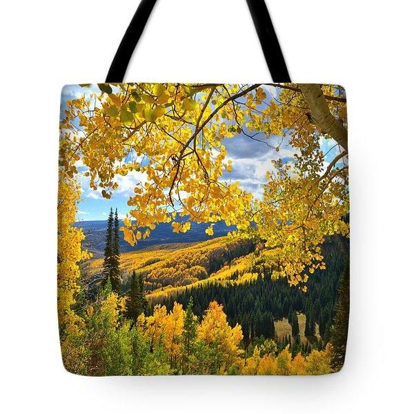 Ohio Pass Fall Colors Tote Bag