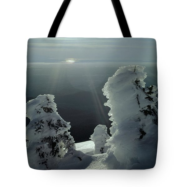 2m4415 A Ice Covered Trees Over Puget Sound Tote Bag
