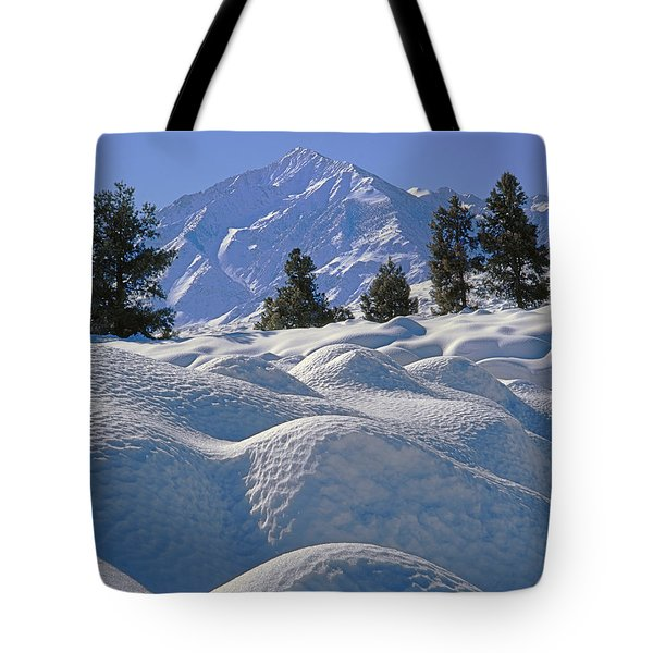 2m6402 Mt. Tom From Sherwin Grade Tote Bag
