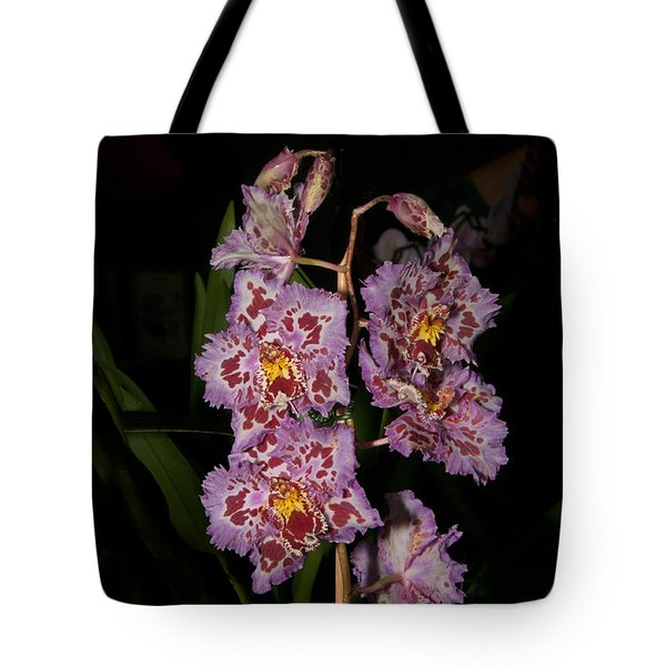 Cattleya Style Orchids Tote Bag