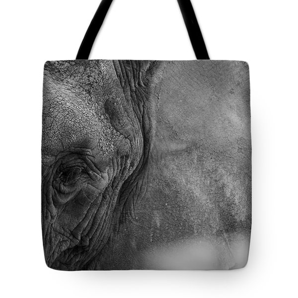 African Elephant  Tote Bag by Kevin Blackburn
