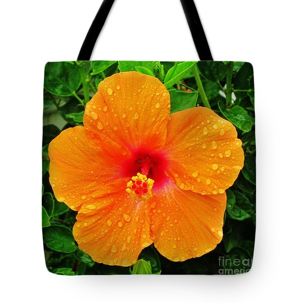 Tote Bag featuring the photograph After The Rain by Craig Wood