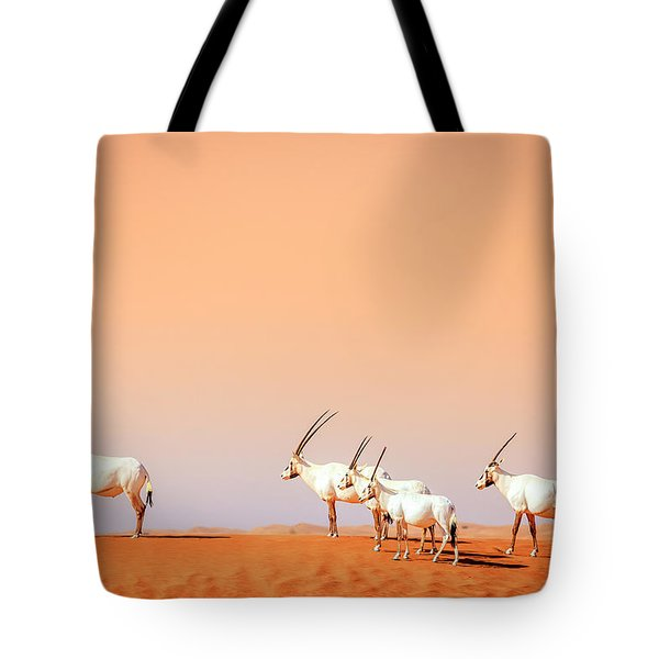 Tote Bag featuring the photograph Arabian Oryx by Alexey Stiop