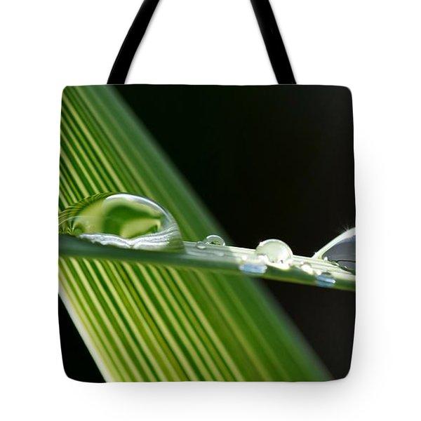 Big Rain Drops On Leaf Tote Bag by Werner Lehmann