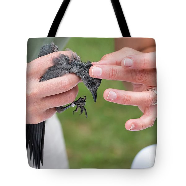 Tote Bag featuring the photograph Bird Banding by Michael D Miller