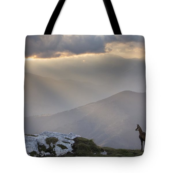 Black Goat In The Mountains Wildlife Tote Bag