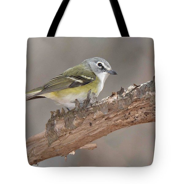 Blue-headed Vireo Tote Bag
