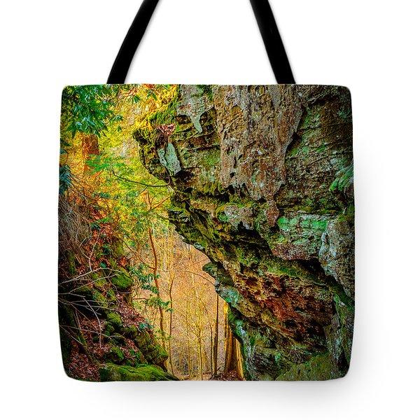 3 Bridges Trail #1 Tote Bag