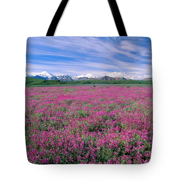 Denali National Park Tote Bag by John Hyde - Printscapes
